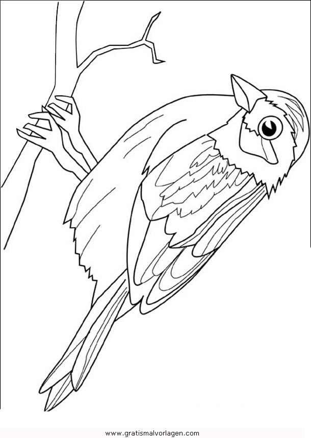 Vögel Malvorlagen Zum Ausmalen Für Kinder