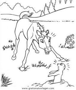 Spirit der wilde mustang09 gratis malvorlage in comic - Coloriage poulain ...