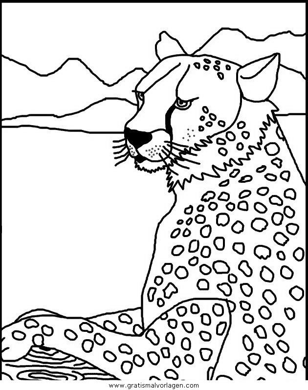 tiger 09 gratis malvorlage in tiere tiger  ausmalen