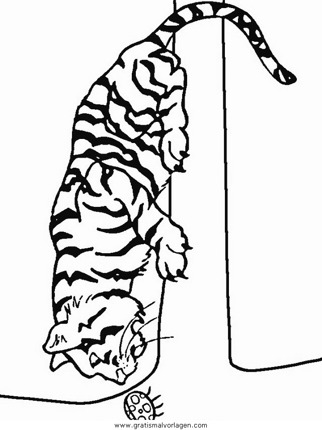 tiger 26 gratis malvorlage in tiere tiger  ausmalen
