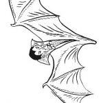 Vampir bilder zum ausdrucken kostenlos