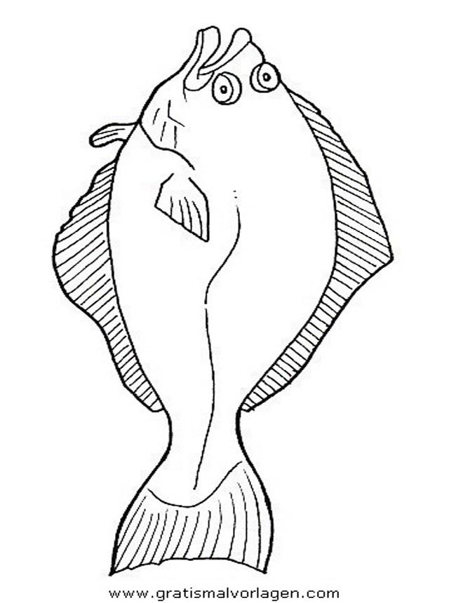 verschiedene fische 101 gratis malvorlage in fische tiere