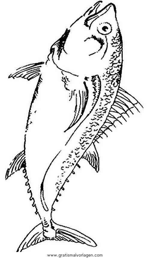 verschiedene fische 114 gratis malvorlage in fische tiere