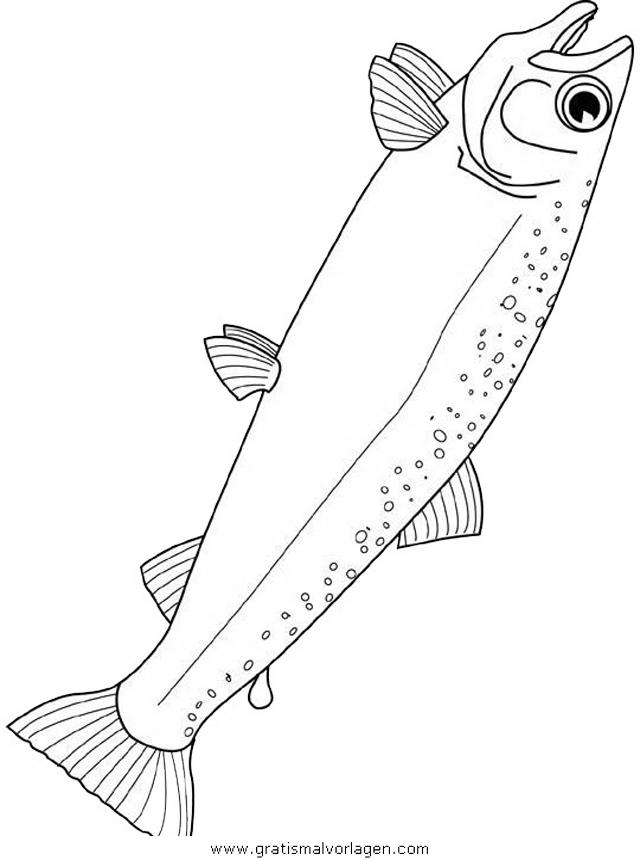 verschiedene fische 131 gratis malvorlage in fische tiere