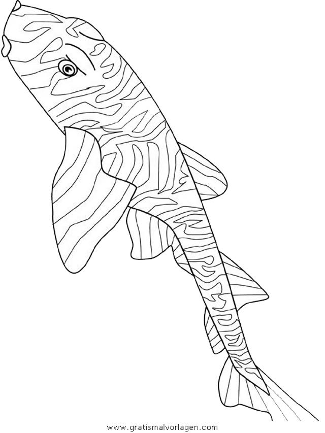 verschiedene fische 149 gratis malvorlage in fische tiere