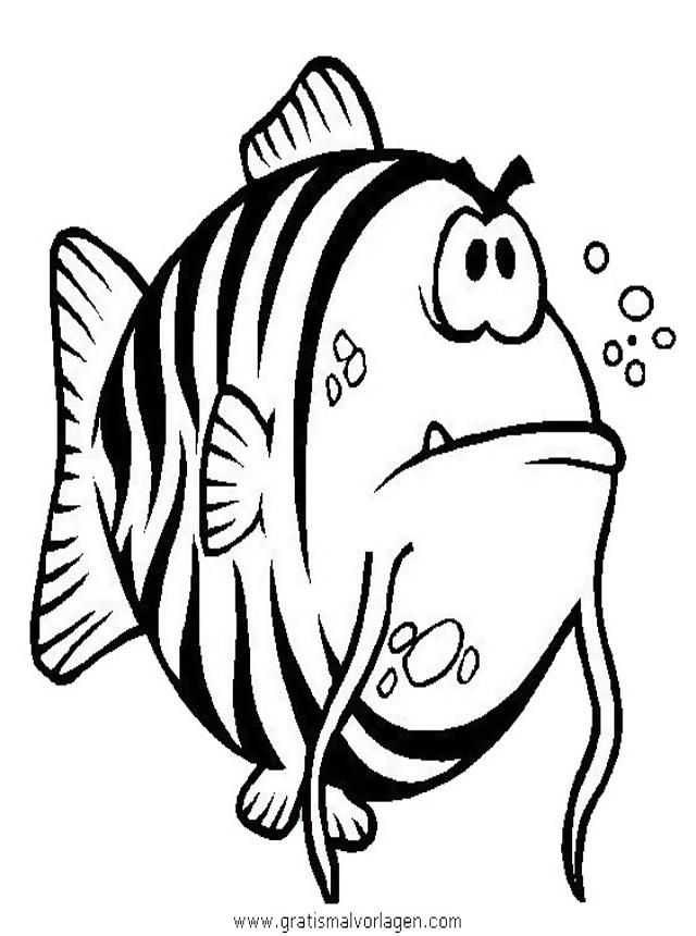 verschiedenefische64