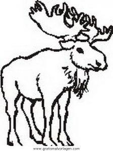 Malvorlage Verschiedene Tiere verschiedene tiere 00