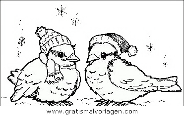 verschiedene vogel 119 gratis malvorlage in tiere vögel