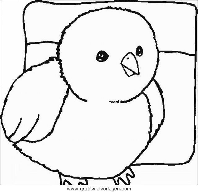 verschiedene vogel 153 gratis malvorlage in tiere vögel
