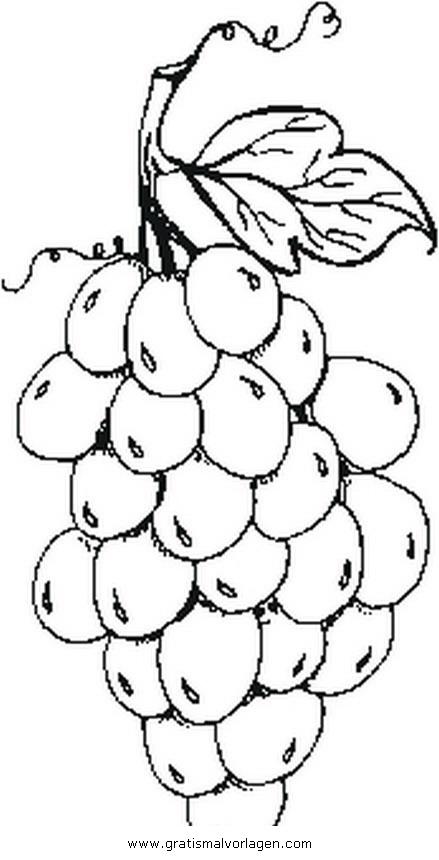 weintrauben 4 gratis Malvorlage in Essen & Trinken, Früchte - ausmalen