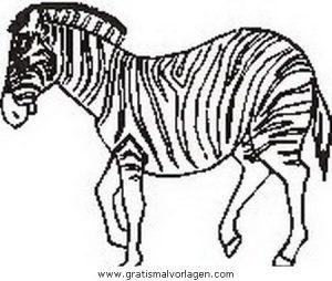 Zebras 51 Gratis Malvorlage In Tiere Zebras Ausmalen