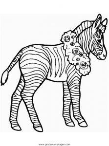 Zebras 57 Gratis Malvorlage In Tiere Zebras Ausmalen