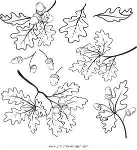 Zweige Gratis Malvorlage In Beliebt12 Diverse Malvorlagen Ausmalen
