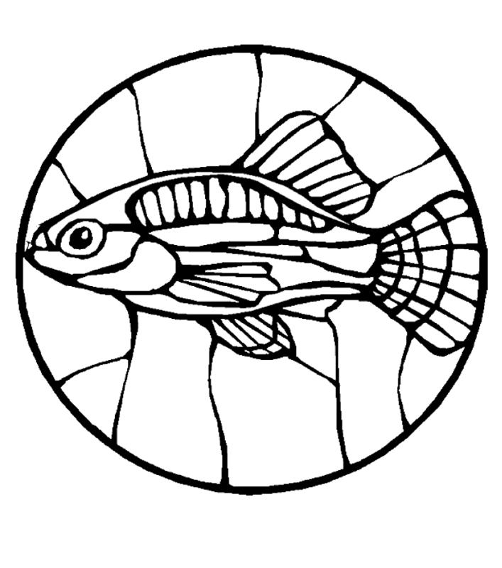 fische00238 gratis malvorlage in fische tiere  ausmalen