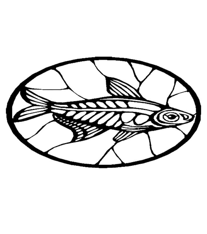fische00259 gratis malvorlage in fische tiere  ausmalen