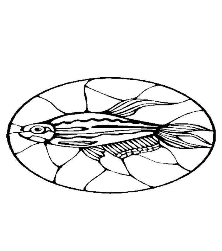 fische00261 gratis malvorlage in fische tiere  ausmalen