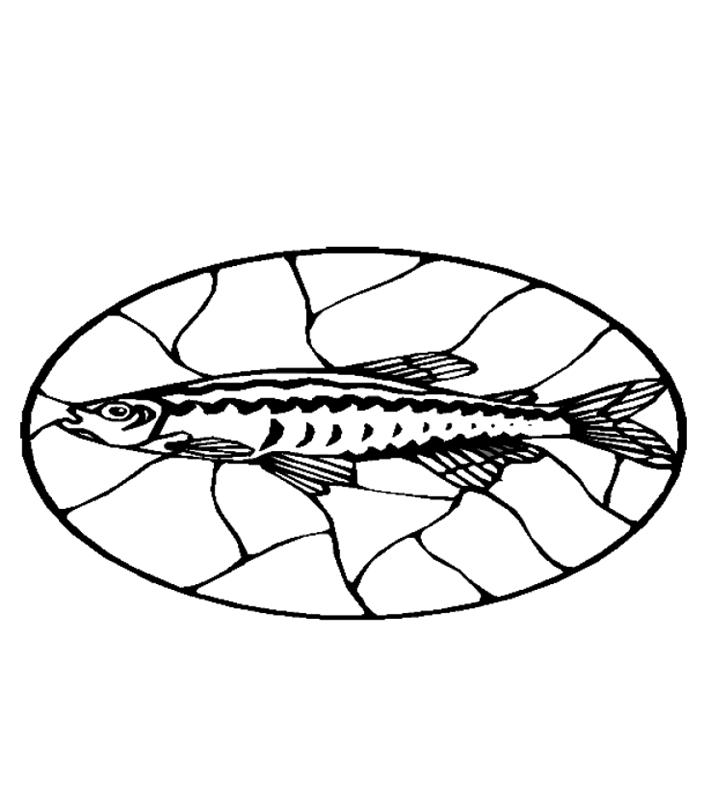 fische00262 gratis malvorlage in fische tiere  ausmalen