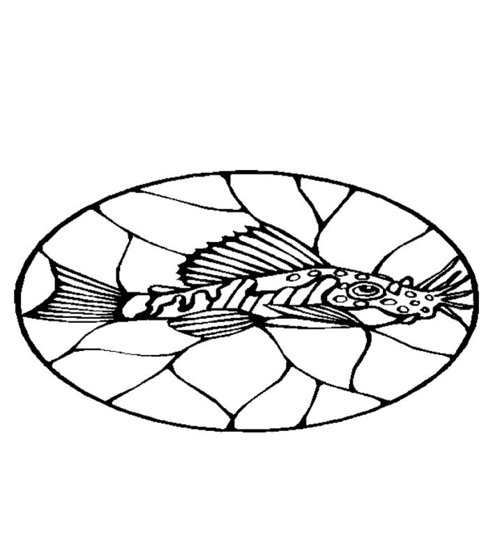 fische00263 gratis malvorlage in fische tiere  ausmalen