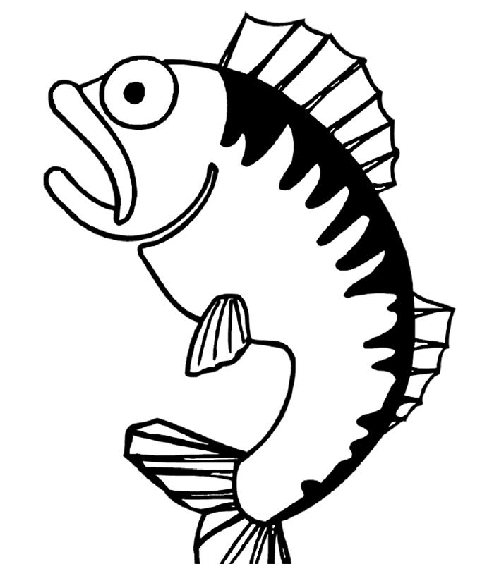 malvorlagen fische ausdrucken  malbild