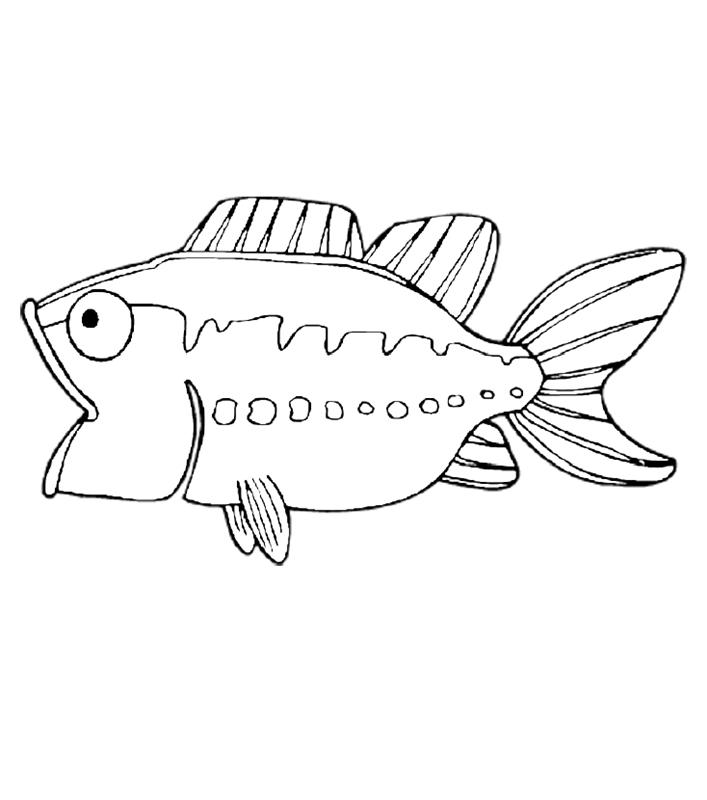fische00280 gratis malvorlage in fische tiere  ausmalen