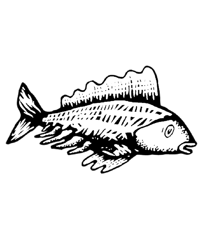 fische00283 gratis malvorlage in fische tiere  ausmalen