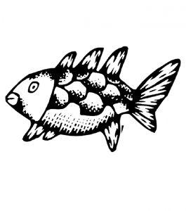 Malvorlage Fische Fische_00293