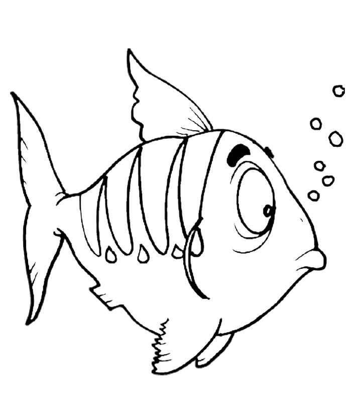 fische00298 gratis malvorlage in fische tiere  ausmalen