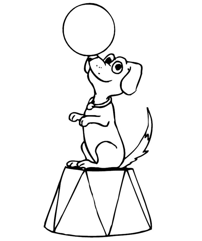 hunde00188 gratis malvorlage in hunde tiere  ausmalen
