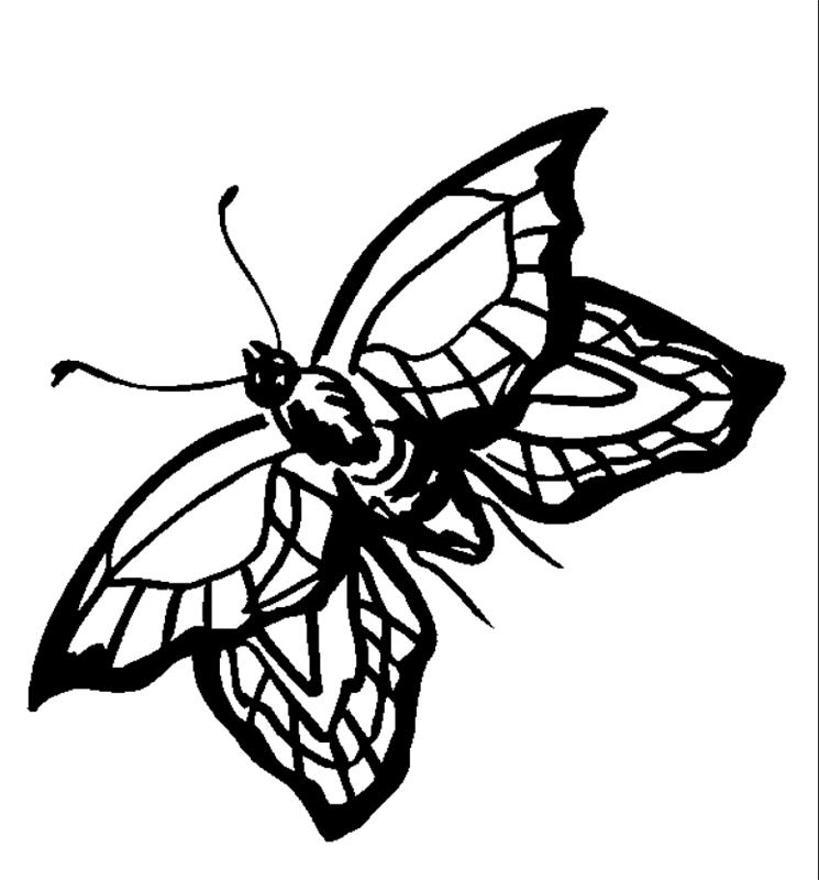 insekten00223 gratis malvorlage in insekten tiere  ausmalen