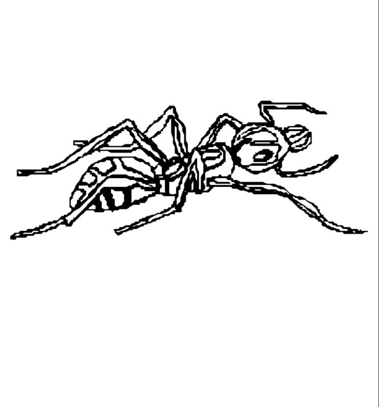 insekten00228 gratis malvorlage in insekten tiere  ausmalen