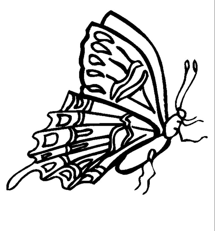 insekten00238 gratis malvorlage in insekten tiere  ausmalen
