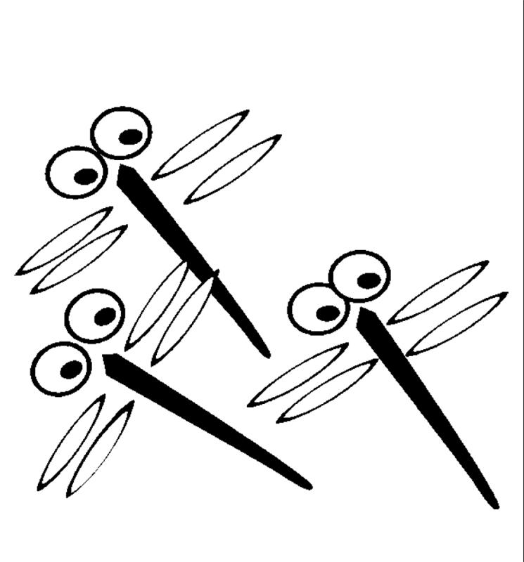 insekten_00250 gratis malvorlage in insekten, tiere - ausmalen