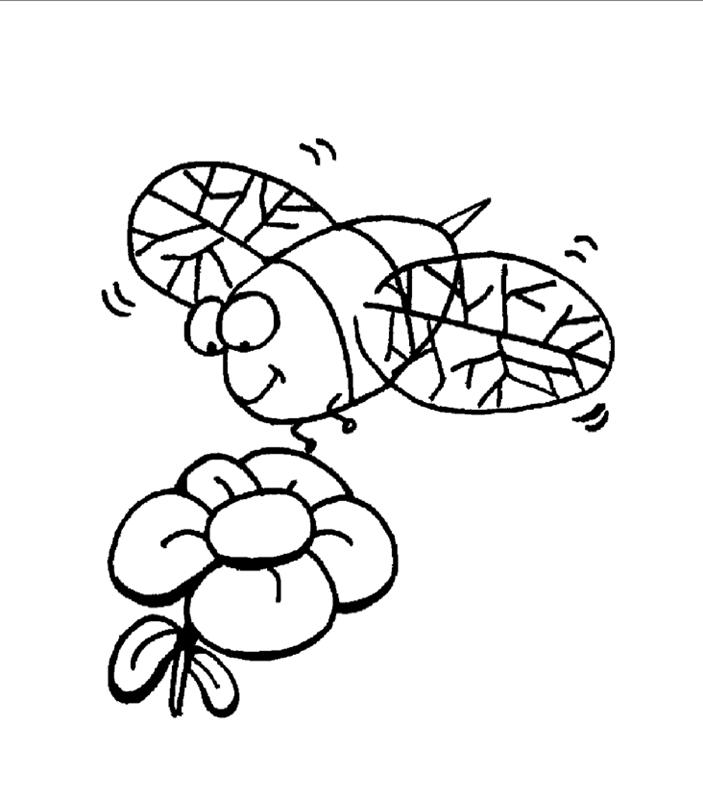 insekten00285 gratis malvorlage in insekten tiere  ausmalen