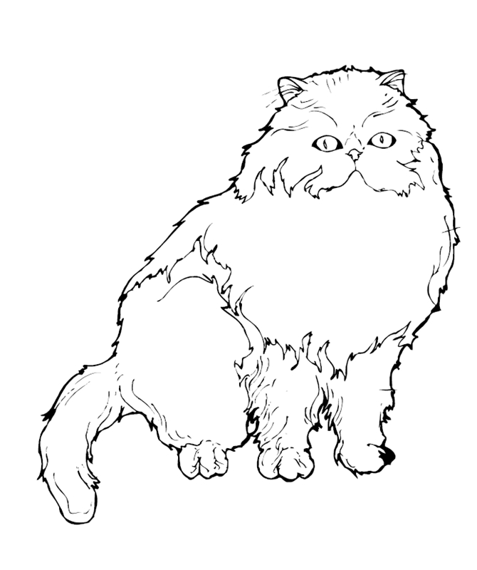 katzen00662 gratis malvorlage in katzen tiere  ausmalen