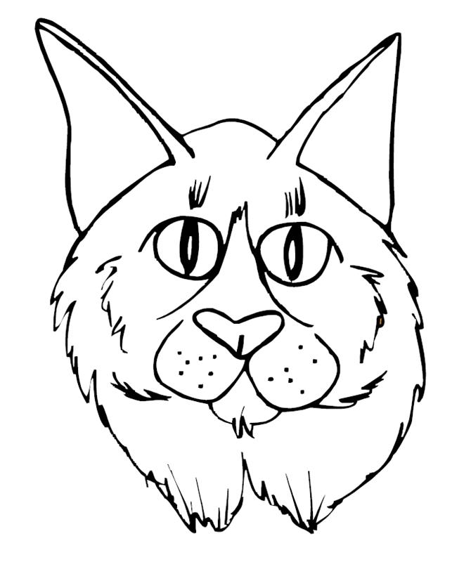 katzen00676 gratis malvorlage in katzen tiere  ausmalen