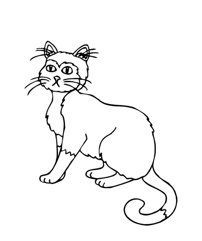 katzen00692 gratis malvorlage in katzen tiere  ausmalen