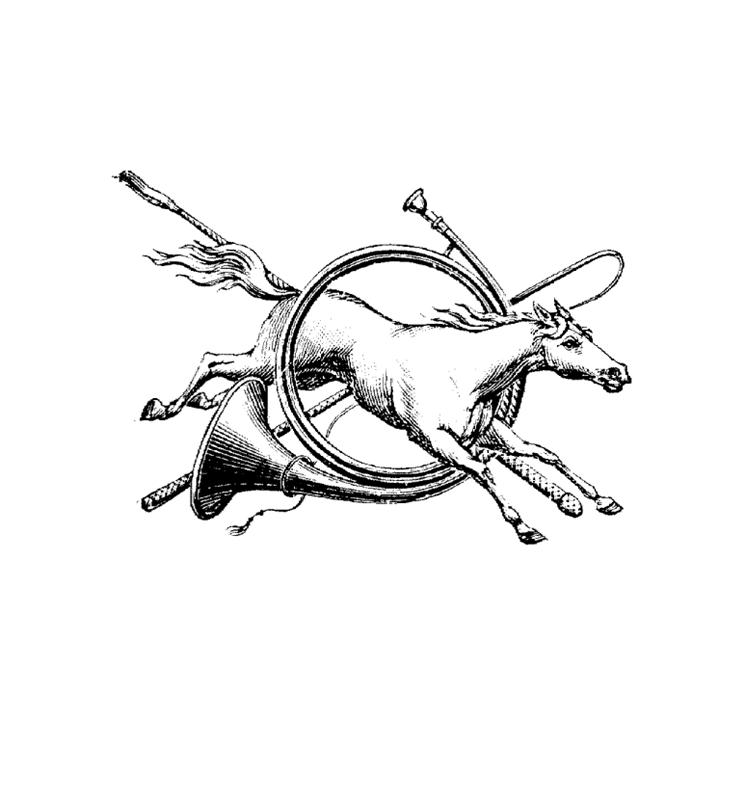 pferde00021 gratis malvorlage in pferde tiere  ausmalen