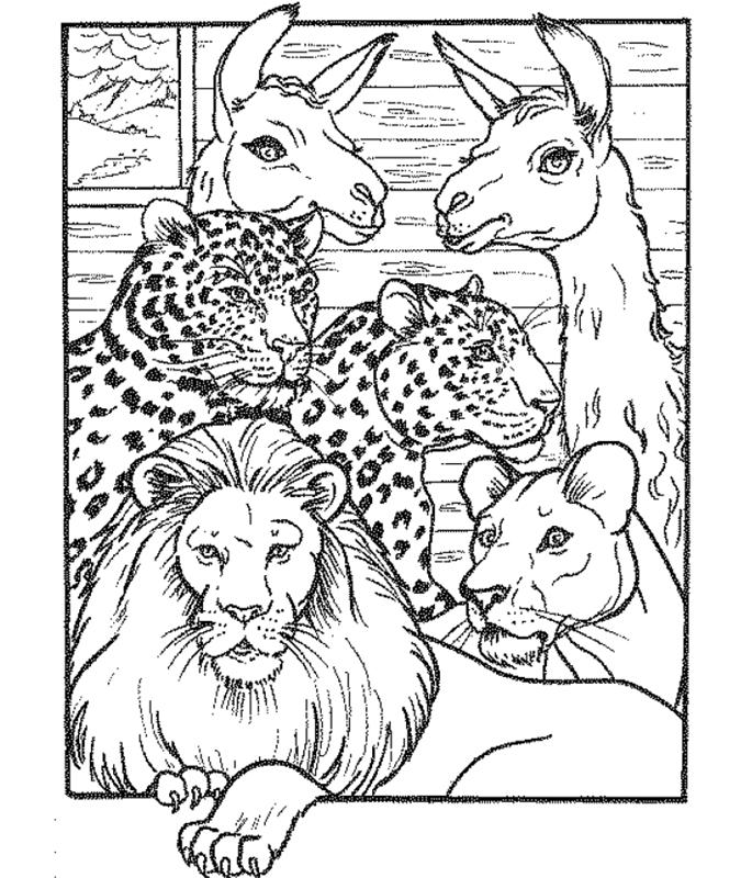 malvorlagen zoo ausmalbilder