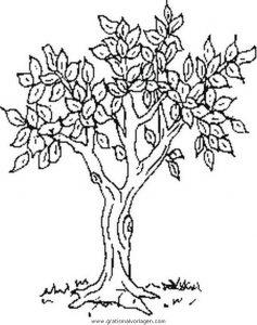 Baum gratis Malvorlage in Diverse Malvorlagen, Garten   ausmalen